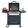 Ψησταριά Υγραερίου BASIC με 3 καυστήρες και πλαϊνά ράφια 661312 661312
